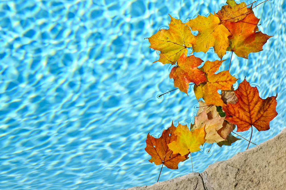 Fall Pool Closing